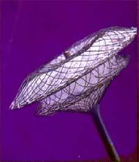 ASD-umbrella